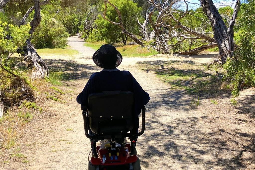 accessible paths stay in Barwon Heads