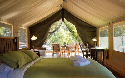 accessible glamping Safari Tents